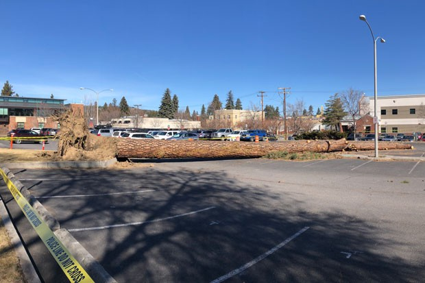 The wind was a little too strong Sunday! Here's a look at the aftermath in the parking lot of the Bend-La Pine Schools administration building in downtown Bend. Bend Senior High School saw damage too, when a winds resulted in a transformer fire that closed classes there Monday. - ISAAC BIEHL