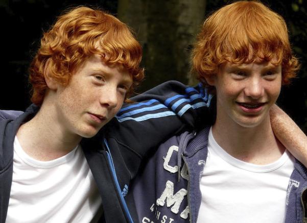 Look! Twins! - EDDY VAN 3000, FLICKR