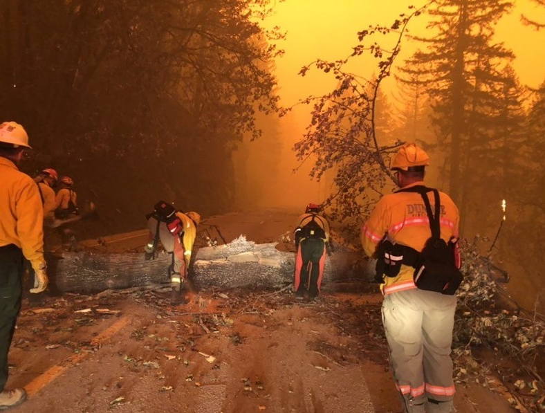 A scene from the Holiday Farm Fire east of Sisters. - OREGON STATE FIRE MARSHAL