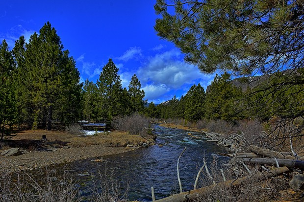 Tumalo Creek was nominated by a local middle schooler for Wild and Scenic legislation. - KIRT EDBLOM / FLICKR