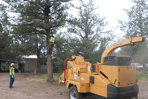 Wood is loaded into a woodchipper with the debris flying into a Central Oregon Tree Experts Truck. - JACK HARVEL