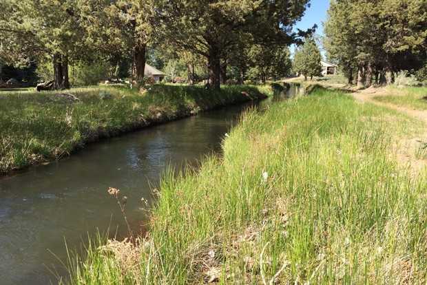 An open canal of the Arnold Irrigation District. - COURTESY ARNOLD IRRIGATION