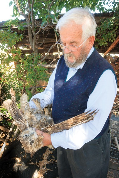 Jim Anderson holds a dead, adult, great horned owl picked up along Hwy 20, still clutching a fresh-caught mouse in its talons.