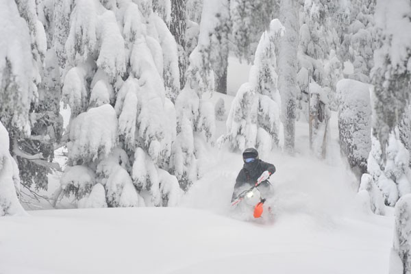 Cascade Snowbikes co-owner Dave Reuss rides the deep powder on one of the snowbikes he built. - CHRIS RIESNER