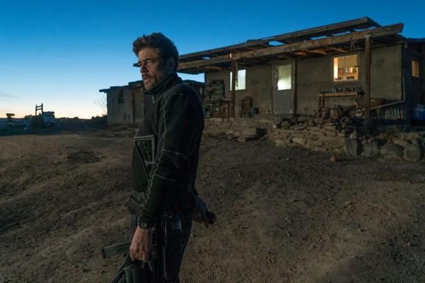 Benicio Del Toro will make you disappear before you even know it. - CMTG
