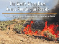 The West's Worst Fires Aren't Burning in Forests