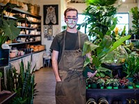 Best Indoor Plant Shop