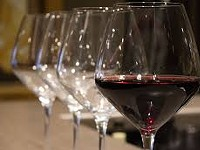 Discover Northwest Grape to Glass at Locavines Wine Tasting