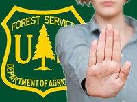 Alleged Harassment in the Forest Service
