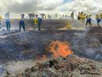 Governor Forms Oregon Wildfire Response Council