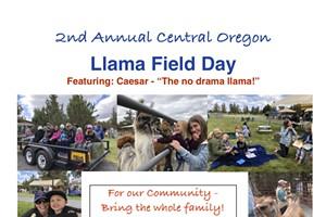 Central Oregon Llama Field Day