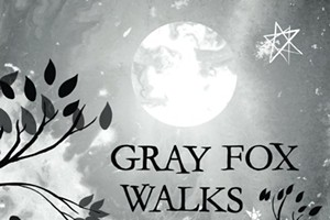 Storytime: Gray Fox Walks by Isaac Peterson