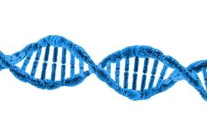 Beginning DNA for Genealogy Workshop