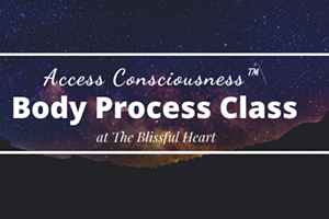 Access Consciousness Body Process Series