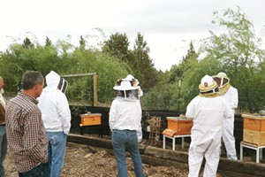 Intro to Beekeeping with Tumalo Bee Academy's Master Beekeeper-Stephen Harris