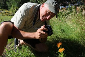 Know Wild - Wildflowers of Oregon