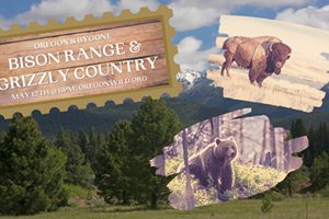 Webcast: Oregon as Bygone Bison Range & Grizzly Country