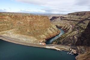 Virtual Event: Hydropower & Habitat