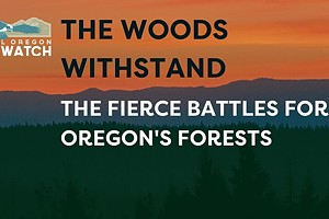 The Woods Withstand: The Fierce Battles for Oregon's Forests