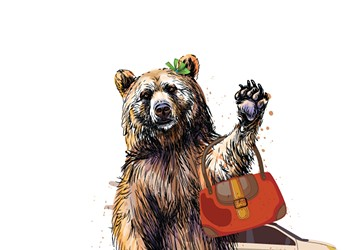 Back Off, Mama Bear