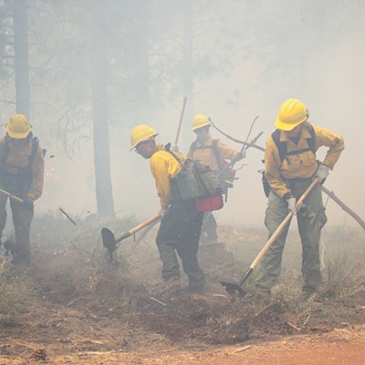 Wildland Firefighter Training
