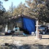City Pauses Homeless Camp Evictions