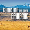 Combating the other Epidemic
