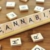 Cannabis Collab Seeking New Members