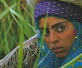 'Gabbeh', A film imbued with the ideas of Sufism - Uploaded by Dona Evans