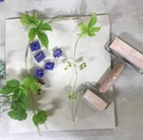 Using Plants to Print on Clay - Uploaded by Yvonne Bovee Tornatta