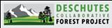 dcfp_logo1.png