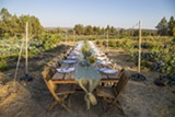 Longtable Dinner in the garden - Uploaded by Sarahlee Lawrence