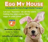 Egg My House! A Fundraiser for Furry Freight Shelter Transport - Uploaded by Kimbero