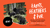 fangs-feathers-fur-8-768x432.png
