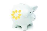 e75e6633_piggy_bank.jpg