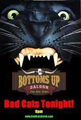 17070358_b_up_-cat_guitar_mouth.jpg