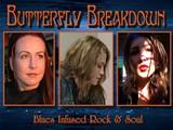 26a9a80f_butterflybreakdown2017.jpg