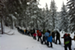 Snowshoe Nature Hike with a Ranger @ Mt. Bachelor