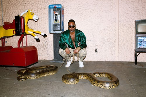 Whose snake is this?