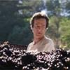 A Vine Frenzy