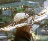 Bird-Friendly Art Hats