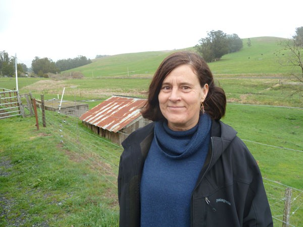 Cheesemaker Alissa Tappan, owner of North Bay Curds and Whey, is a member of a cheese co-op in Tomales. - STETT HOLBROOK
