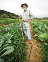 DIVERSE THINKING Lou Preston, at Preston Vineyards in Cloverdale, has removed 40 percent of his vineyards to make room for peaches, walnuts, olives and vegetables. - MICHAEL AMSLER