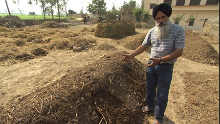 EARTH'S FOUNDATION Jaspal Singh Chattha shows off his impressive compost pile.