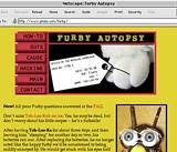 Furbies Online