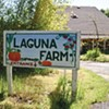 Laguna Farms Turns 30