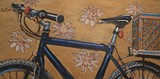 bike72_jpg-magnum.jpg