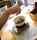 marijuana-0524.jpg