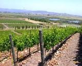 winecountry.jpg