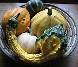 Oct. 7: Calabash-A Festival of Gourds, Arts and Gardens at Food for Thought